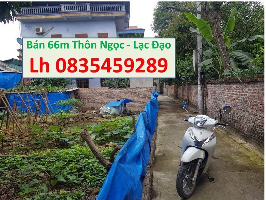 Bán đất làm nhà kho 288m2 đường to xe tải vào tại Lạc Đạo, giá tốt